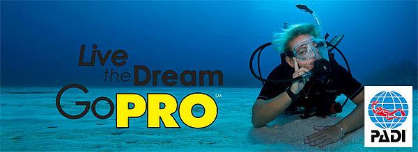 dive master course paradise divers
